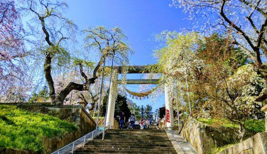 【日本一の大鳥居! 】継目がない巨大な鳥居を烏帽子山八幡宮に見に行ってきた!