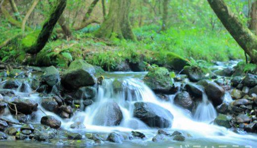 【秘境】山吹水源の名水で反対側の世界を覗いてみよう!