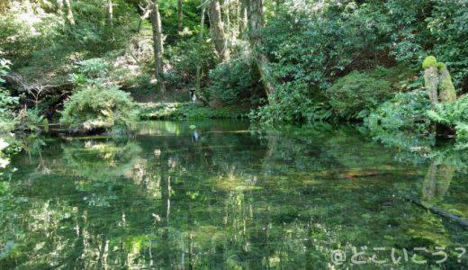 【秘境】池山水源でインスタ映えの水源を見に行こう!