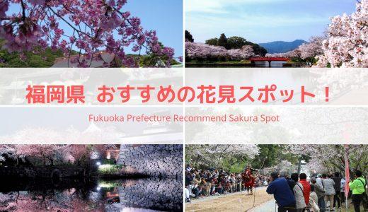 福岡県おすすめの花見スポットまとめ!