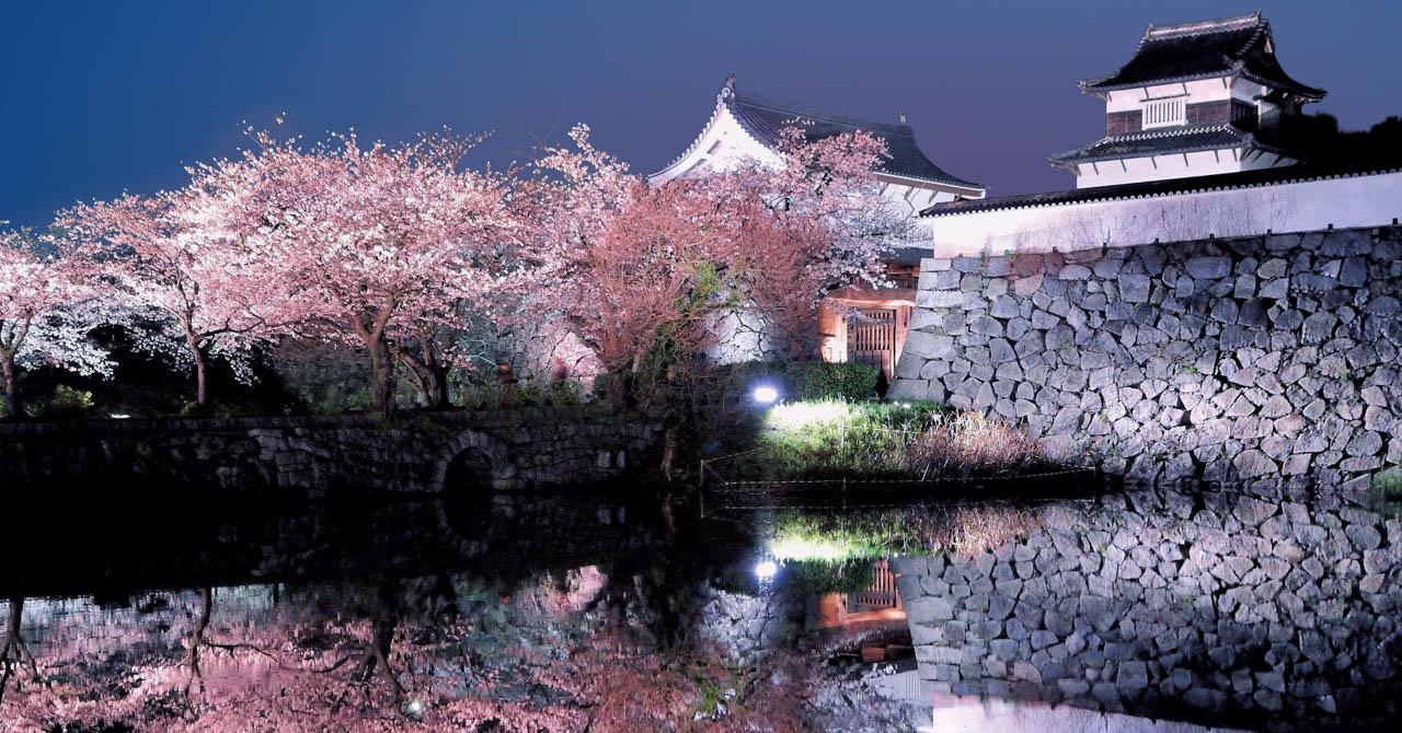 福岡城跡 桜