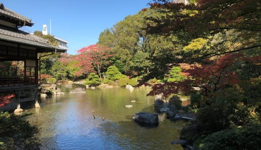 【紅葉】友泉亭公園の大広間から見る日本庭園が絵のような美しさ!